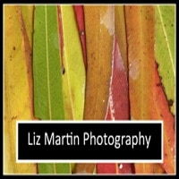 Liz Martin Photography
