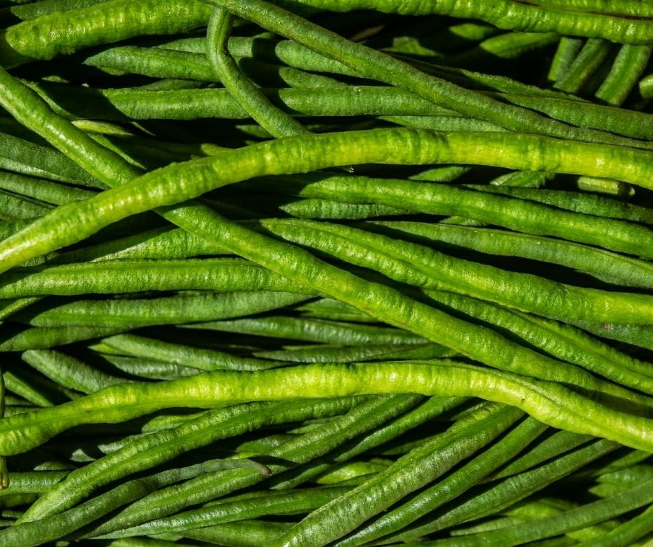 snake beans image